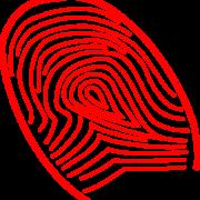 Identificacion y trazabilidad de los productos sanitarios